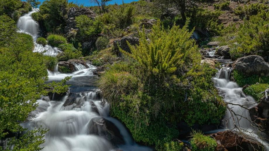 La cascada está camino a la laguna Vaca Lauquen. Unos tres km antes hay que desviarse unos 300 metros del camino y... mirar detrás de los ñires. Foto: Ricardo Kleine Samson.