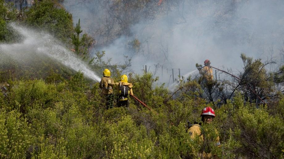 Piden refuerzos para hacer frente al incendio forestal en El Bolsón. Foto: Marcelo Martínez