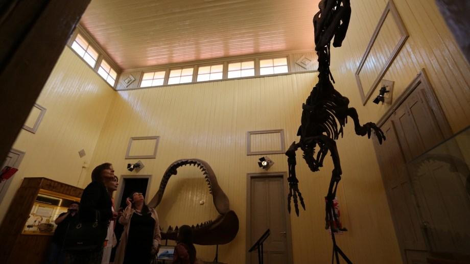 Los dinosaurios están presentes en el Museo Jaccobaci y son los preferidos de niñas y niños