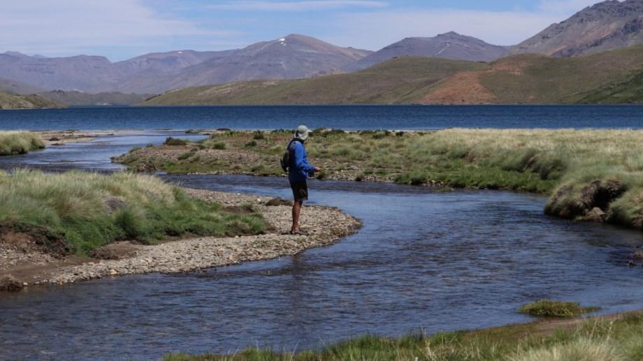 Guillermo pesca en el río Benitez, metros antes de la desembocadura en la laguna Varvarco Campos. Foto: Alejandro Forrester.