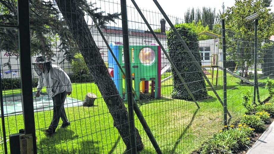El mantenimiento de los establecimientos fue uno de los puntos clave en la discusión del regreso a las aulas. Foto: Yamil Regules.