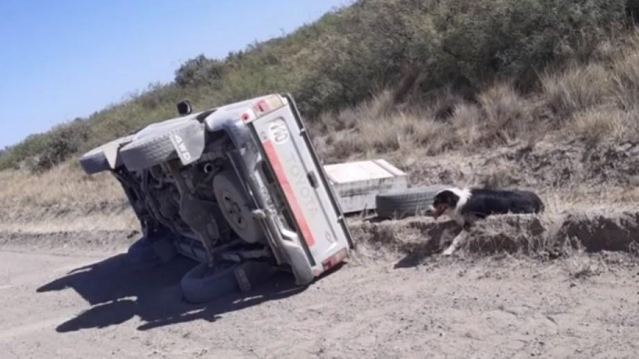 Así fue hallada la camioneta de Ferrandi y su perro atado a la rueda de auxilio de la camioneta.
