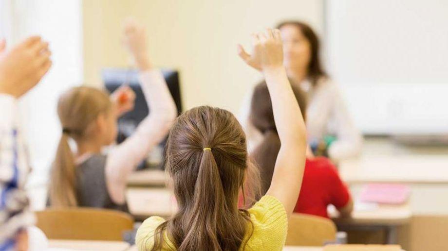 Las líneas incluyen a estudiantes de primaria, secundaria, terciario y universidad.-
