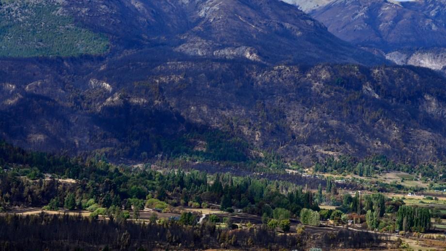 Los incendios se produjeron el 9 de marzo pasado. Foto: archivo
