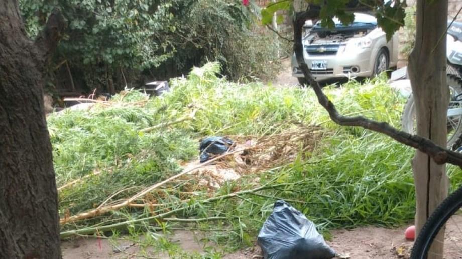 Los operativos se realizaron en el barrio Progreso. Foto gentileza.