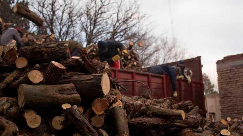 """""""A Misiones le costó 100 años ser potencia forestal"""", dijo el productor local Gerardo Waidelich. Foto: archivo"""