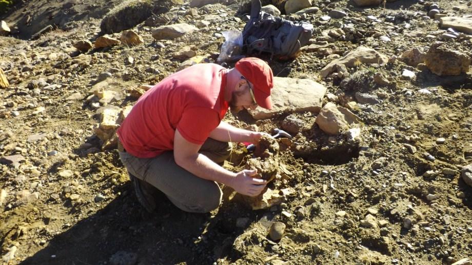 El paleobotánico Leandro Martínez es investigador del CONICET en el Instituto de Botánica Darwinion y Profesor en la Universidad Nacional de La Plata. Estudia los troncos petrificados en Neuquén.