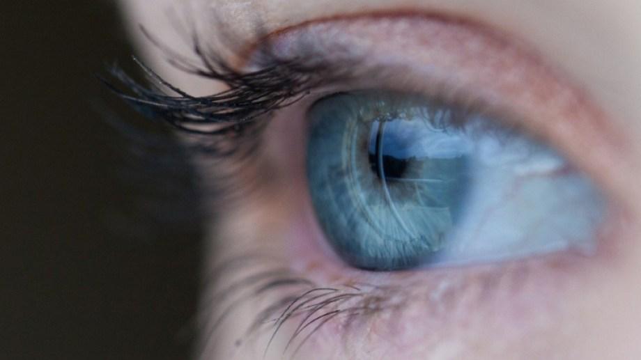Identificaron mutaciones genéticas asociadas a una severa discapacidad visual hereditaria. Se trata de la retinopatía de Stargardt, cuya incidencia a nivel mundial es de alrededor de un caso cada 10.000 personas. El avance apuntó al desarrollo de terapias personalizadas para estos pacientes y fue liderado por investigadores del Instituto Leloir, del Hospital Garrahan y del CONICET. Piden que más personas con enfermedades poco frecuentes accedan a diagnósticos personalizados