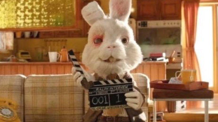 Ralph, el conejo que muestra el maltrato animal en la industria cosmética.