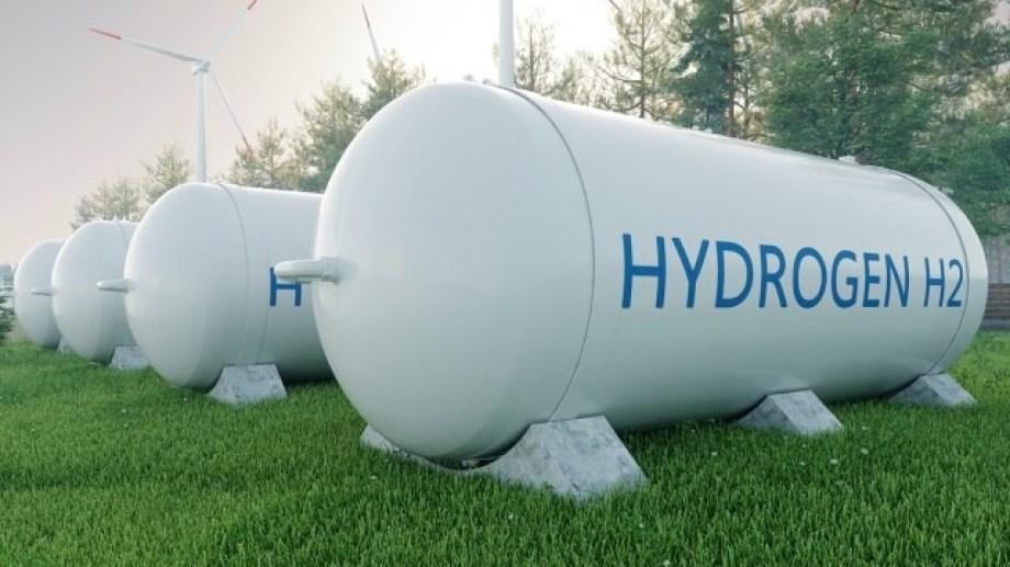 Ieasa apuesta a desarrollar el primer gran proyecto de hidrógeno verde del país en Bahía Blanca.