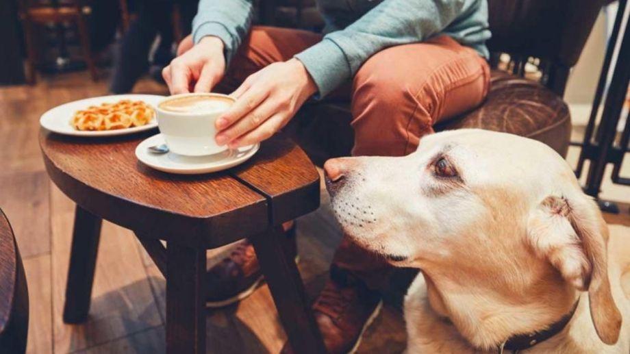 El tiempo acompaña para tomar un café con tu mejor amigo, no?.-