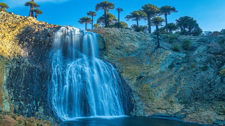 Cascadas y araucarias, la maravillosa combinación de Caviahue Copahue. Foto: Ricardo Kleine Samson