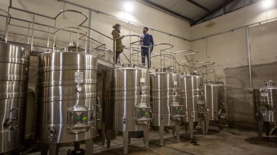 En Bodega Aonikenk, la cosecha del verano en el proceso a hacerse vino. Fotos: Juan José Thomes.