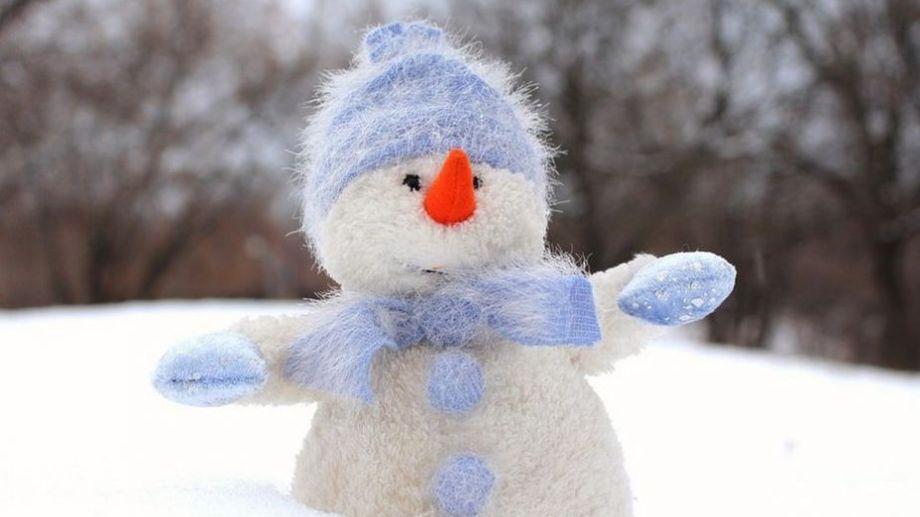 Si bien se mencionó la posibilidad de que llegue la nieve a la región, aún no hay certezas al respecto.-