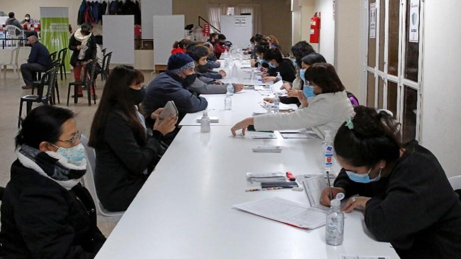 Trabajo a pleno en la Colonia Penal de Roca, donde esta semana superarán las 40.000 aplicaciones. (Foto: Juan Thomes)