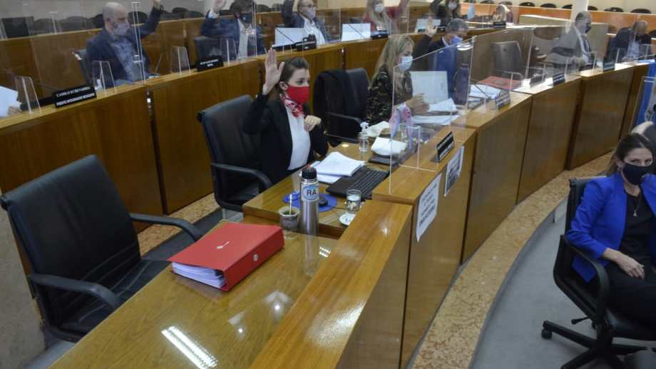 El Concejo Deliberante votó la enmienda de la Carta Orgánica Municipal (foto Yamil Regules)