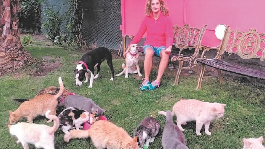 Fernanda en el patio con algunos de los 30 gatos rescatados y 3 perras
