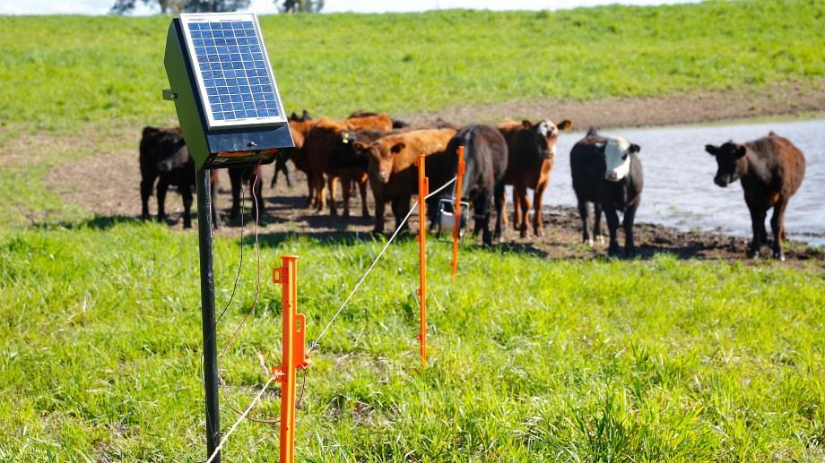 Las ofertas son para la provisión e instalación de 1.574 sistemas de bombeo de agua a partir de energía solar. (Foto: gentileza)