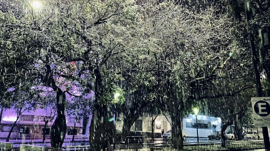 El centro de la capital de Córdoba se cubrió de nieve.