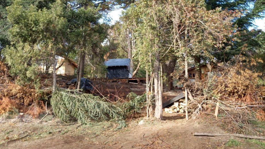 La toma El Acampe se desarrolla en un terreno del Instituto de Seguridad Social en Villa La Angostura. (gentileza Diario Andino)