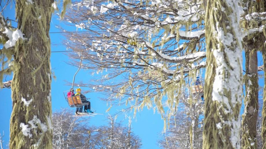 Rumbo a las alturas en el bosque nevado. Foto: Patricio Rodríguez.