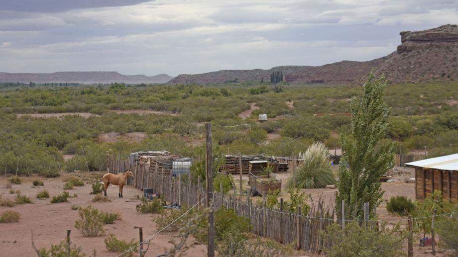 Sauzal Bonito, la localidad  que convive con la actividad sísmica. Foto: Florencia Salto