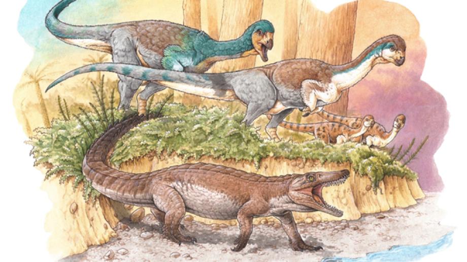 El hallazgo es de un reptil prehistórico, ancestro de los cocodrilos modernos que habitó la Patagonia hace aproximadamente 148 millones de años. Ilustración: Gabriel Lio