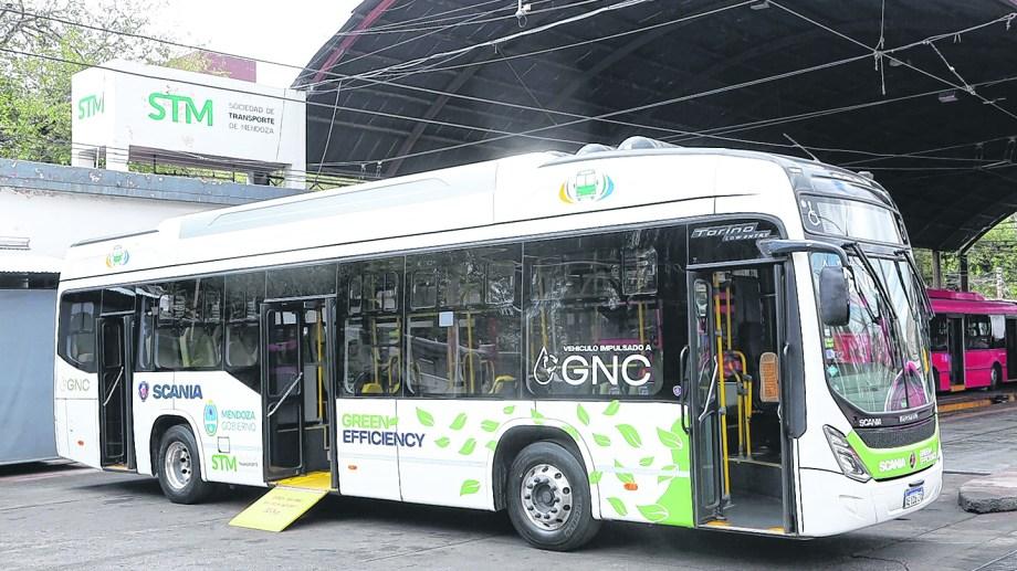 El país tiene amplios recursos de gas natural y litio para potenciar la transición. (Foto: Gentileza)