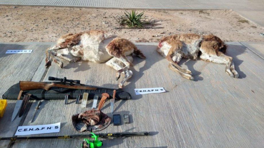 Un operario de una empresa petrolera de Neuquén advirtió a las autoridades de la caza furtiva. Foto: Gentileza Noticiasnqn