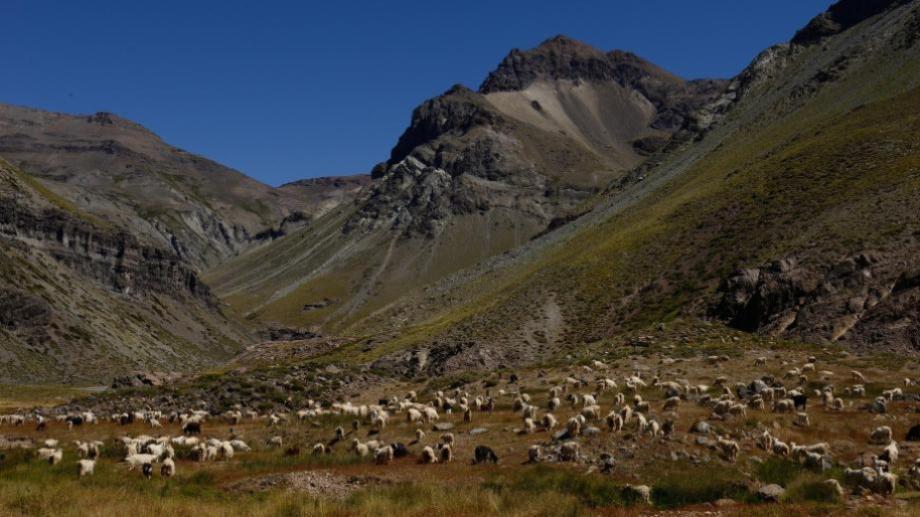 Campesinos piden que se regularicen las tierras que trabajan. Foto: Archivo