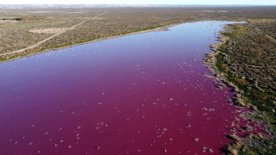 El color intenso del agua alarmó a vecinos y ambientalistas, pese a que el gobierno provincial dice que desaparecerá.