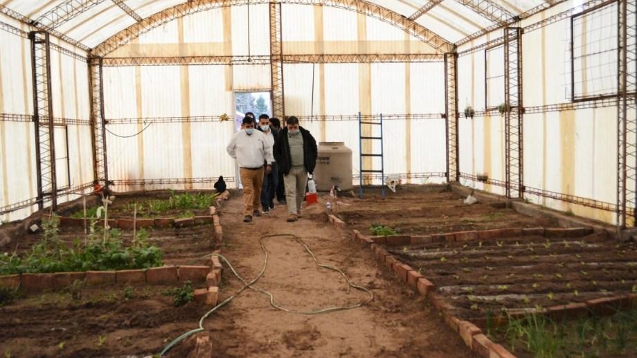 El invernadero está montado en Filli Dei Sur. (Foto Gentileza)