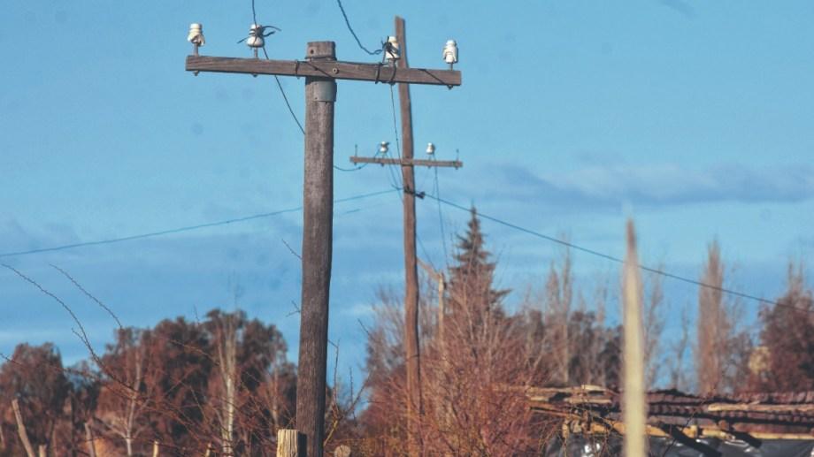 Los puestos están a unos 400 metros del tendido eléctrico y desde hace años reclaman una solución. Foto Andrés Maripe.