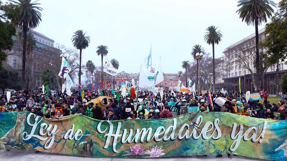 Organizaciones socioambientales presentaron un petitorio para que se trate la Ley de Humedales.