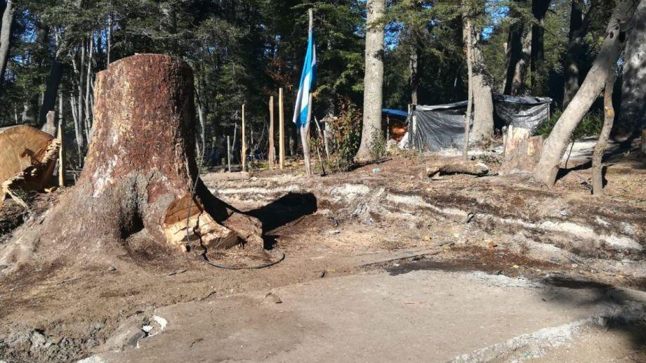La toma de terrenos del ISSN en Villa La Angostura terminó en agosto. (foto: gentileza Diario Andino)