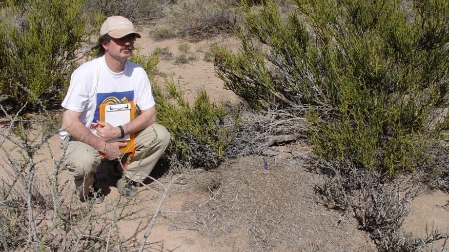 Prestigio. Alejandro Farji-Brener se destaca como referente en estudios sobre las hormigas a nivel mundial