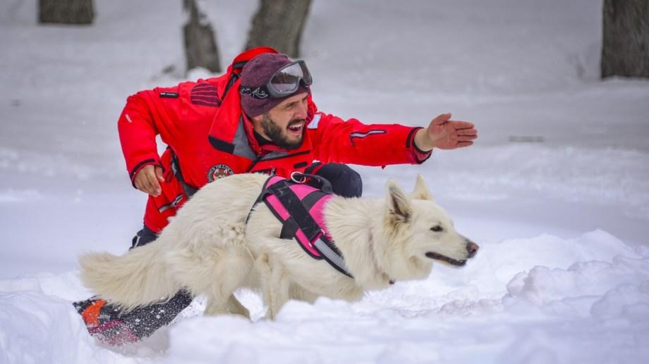 Este programa que inició Bosque de los Huskies de Chapelco.