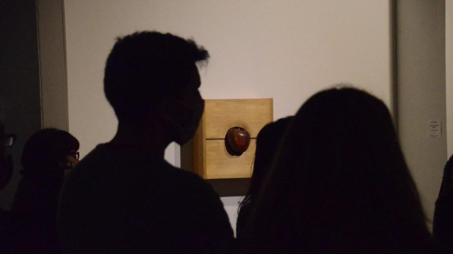 Contemplando la obra de Jack Vañarsky. Foto Gino Avoledo