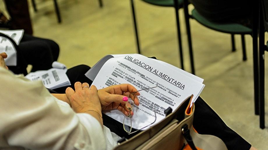 Casi la mitad de los ingresos a mediación familiar en Río Negro fueron por prestaciones alimentarias, en el primer semestre.